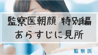 監察医朝顔,特別編,あらすじ,キャスト,見所,続編
