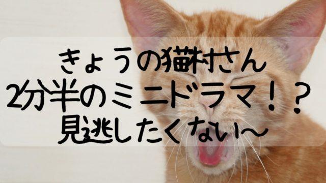 今日の猫村さん,きょうの猫村さん,放送開始日いつ,見逃し,放送局,テレ東,松重さん
