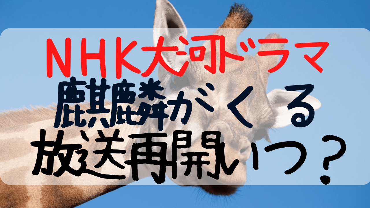 NHK大河ドラマ,麒麟がくる,放送再開,いつ,放送回数,明智光秀