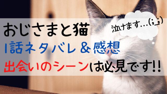 おじ猫,1話,あらすじ,ネタバレ,感想,ねこ,ぬいぐるみ,感動,反応,可愛い,評判,おじさま猫,おじさまとネコ