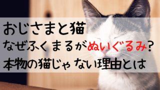 ドラマおじさまと猫,なぜ,ぬいぐるみ,ふくまる,本物でない,理由,おじ猫,本物じゃない,にせもの,おじねこ